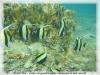 formationphotospetittroueausaline29-03-09cecilenicolasallain-009